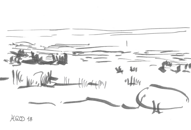drawing calligraphy pen - salt marsh, North Sea coast